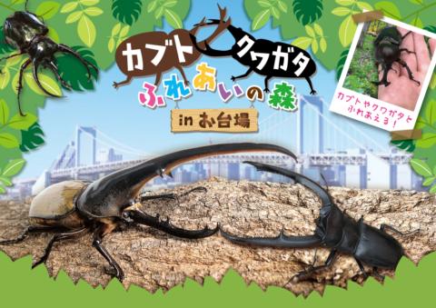 カブト・クワガタ ふれあいの森 in お台場